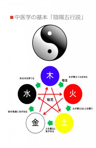 """薬膳うちごはんの""""薬膳""""の基本(陰陽五行説)"""